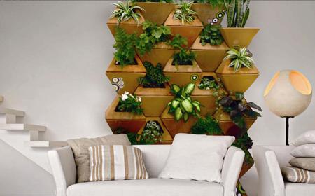 Muro cultivo mis su teres feos for Decoracion del hogar con material reciclado